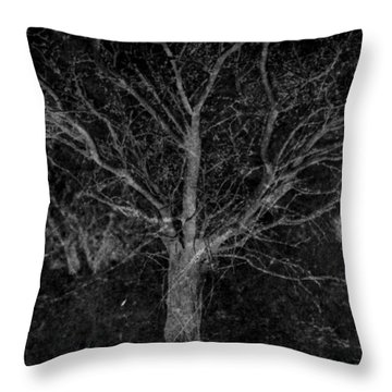 Mingle With Midnight Throw Pillow