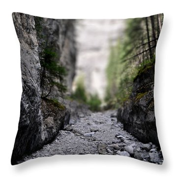 Mini Canyon Throw Pillow