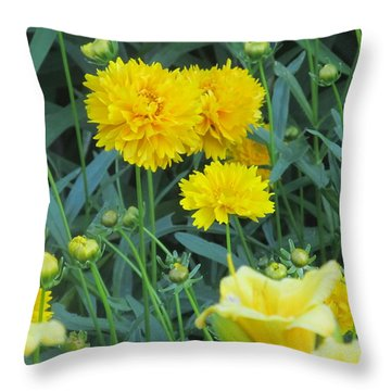 Throw Pillow featuring the photograph Mini Carnations by Tina M Wenger