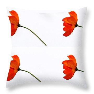 Mini Daisy Four Throw Pillow by Tina M Wenger