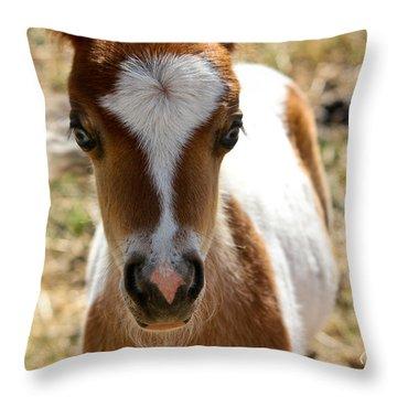 Mini Mini Throw Pillow