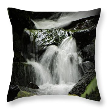 Mini Waterfall 2 Throw Pillow by Chalet Roome-Rigdon