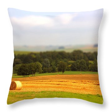 Miniature Countryside Throw Pillow by Vicki Spindler