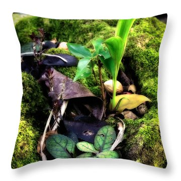 Throw Pillow featuring the photograph Miniature Garden by Jim Thompson