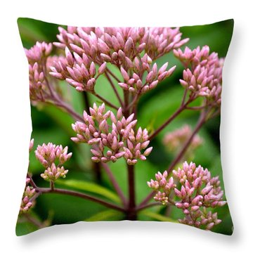 Miniature Purple Cones Throw Pillow