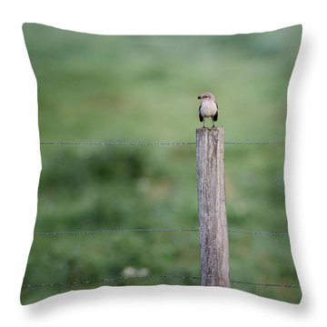Minimalism Mockingbird Throw Pillow