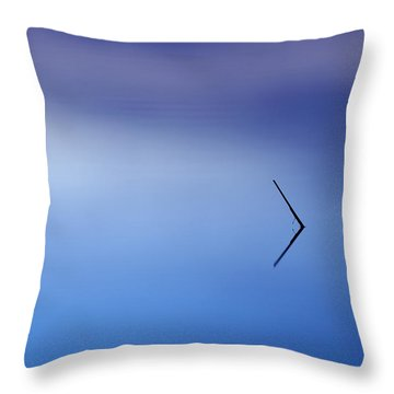 Minimalistic Throw Pillow