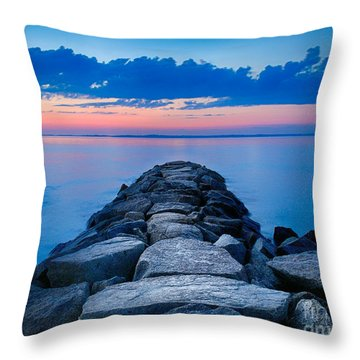 Mink Meadow Jetty Throw Pillow