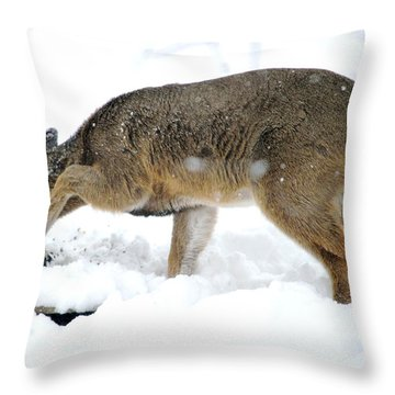 Throw Pillow featuring the photograph Minnesota Winter Struggles by Dacia Doroff