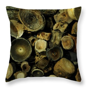 Miocene Fossil Vertebrae Collection Throw Pillow by Rebecca Sherman