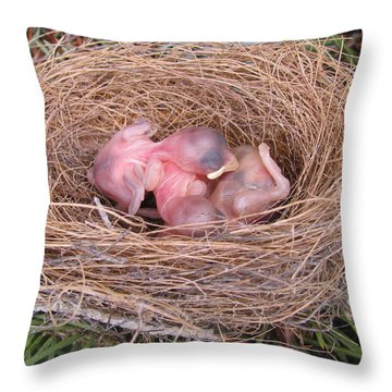 Throw Pillow featuring the photograph Miracle Of Birth _ Baby Robins by Margaret Newcomb