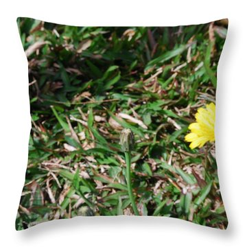 Mirada Throw Pillow