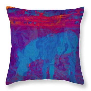 Mirage Throw Pillow by Jan Amiss Photography