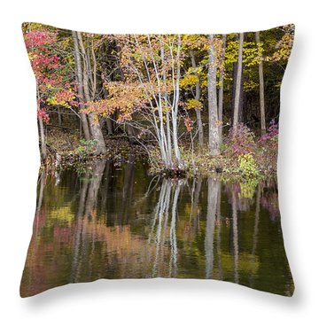 Mirror Throw Pillow by David Cote