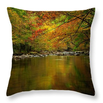 Throw Pillow featuring the photograph Mirror Fall Stream In The Mountains by Debbie Green