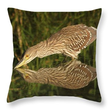 Mirror Mirror On The Wall Who Is The Fairest Heron Of All Throw Pillow