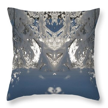 Throw Pillow featuring the photograph Mirror Of Snow  by Cindy Greenstein