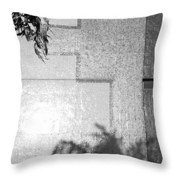 Mirrors 2009 Limited Edition 1 Of 1 Throw Pillow