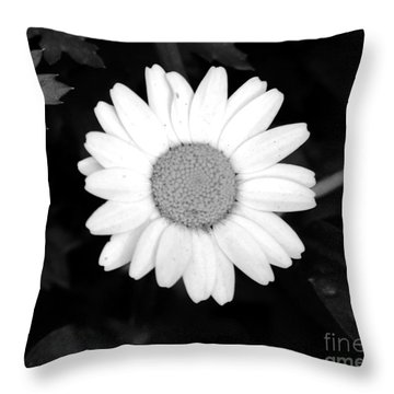 Miss Daisy Throw Pillow by Andrea Anderegg