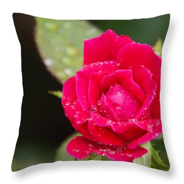 Miss Misty Of Love 1 Throw Pillow