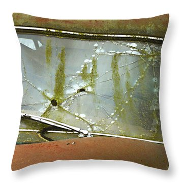Missed Throw Pillow by Jean Noren