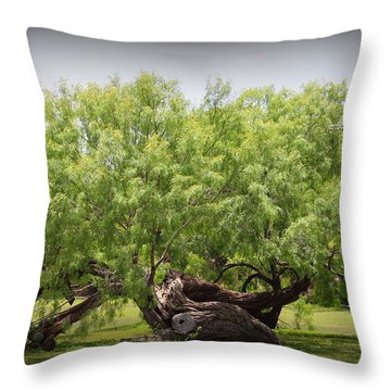 Mission Espada - Tree Throw Pillow
