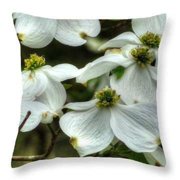 Throw Pillow featuring the photograph Mississippi Dogwood II by Lanita Williams
