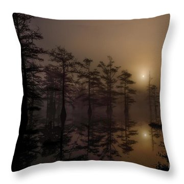 Mississippi Foggy Delta Swamp At Sunrise Throw Pillow