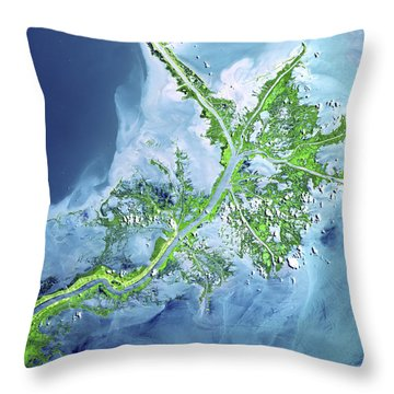 Mississippi River Delta Throw Pillow by Adam Romanowicz
