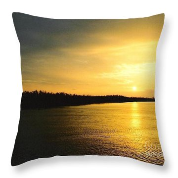 Throw Pillow featuring the photograph Sunrise Over The Mississippi River Post Hurricane Katrina Chalmette Louisiana Usa by Michael Hoard