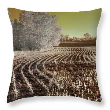 Missouri Corn Field Throw Pillow