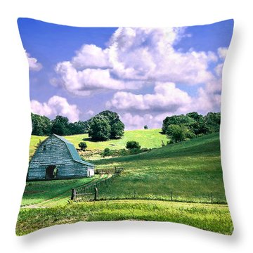 Missouri River Valley Throw Pillow by Steve Karol
