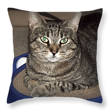 Missy 5 Throw Pillow