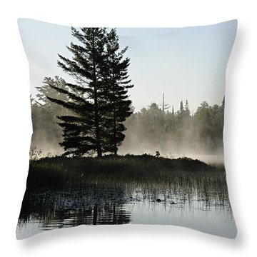 Mist And Silhouette Throw Pillow by Larry Ricker