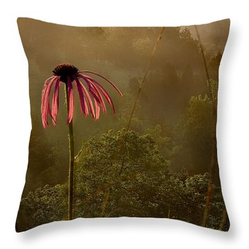 Mist On The Glade Throw Pillow
