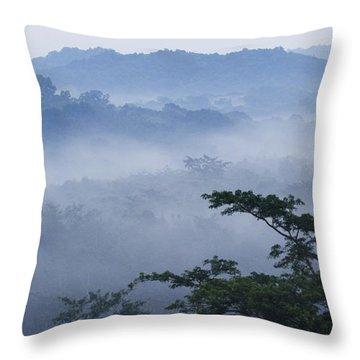 Mist Over Tropical Rainforest Kibale Np Throw Pillow
