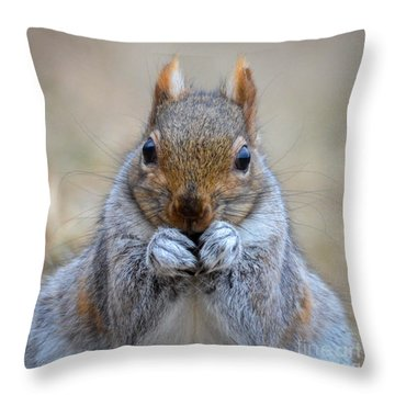 Mister Whiskers Throw Pillow by Amy Porter