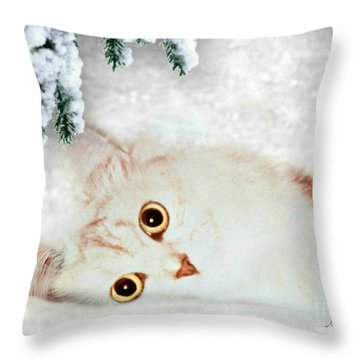 Mistletoe In The Snow Throw Pillow by Morag Bates