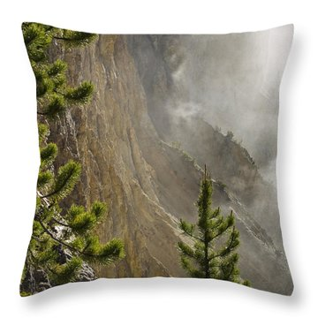 Misty Canyon  Throw Pillow
