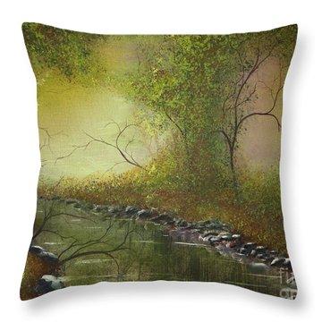 Misty Creek Throw Pillow by Tim Townsend