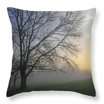 Misty Dawn Throw Pillow
