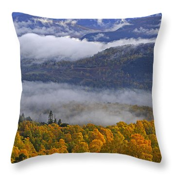 Misty Day In The Cairngorms Throw Pillow by Louise Heusinkveld