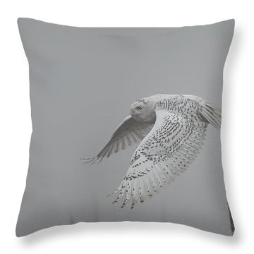 Misty Day Snowy Throw Pillow by Daniel Behm