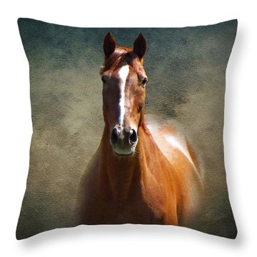 Misty In The Moonlight Throw Pillow