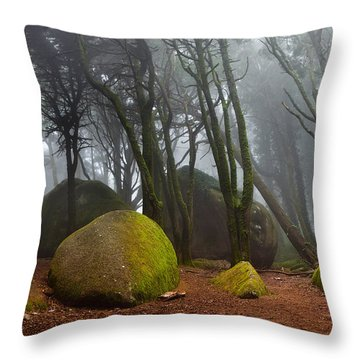 Misty Throw Pillow by Jorge Maia