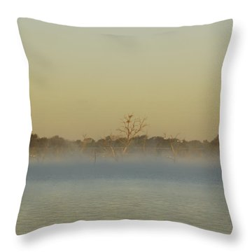Misty Lake Throw Pillow