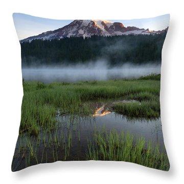 Misty Majesty Throw Pillow