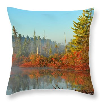 Misty Marsh Throw Pillow by Terri Gostola
