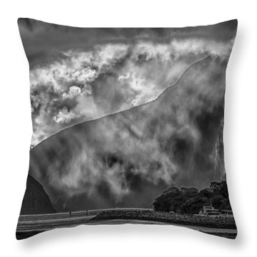 Throw Pillow featuring the photograph Misty Milford by Chris Cousins