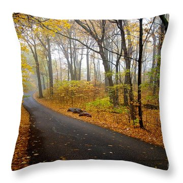 Misty Minnesota Mile Throw Pillow